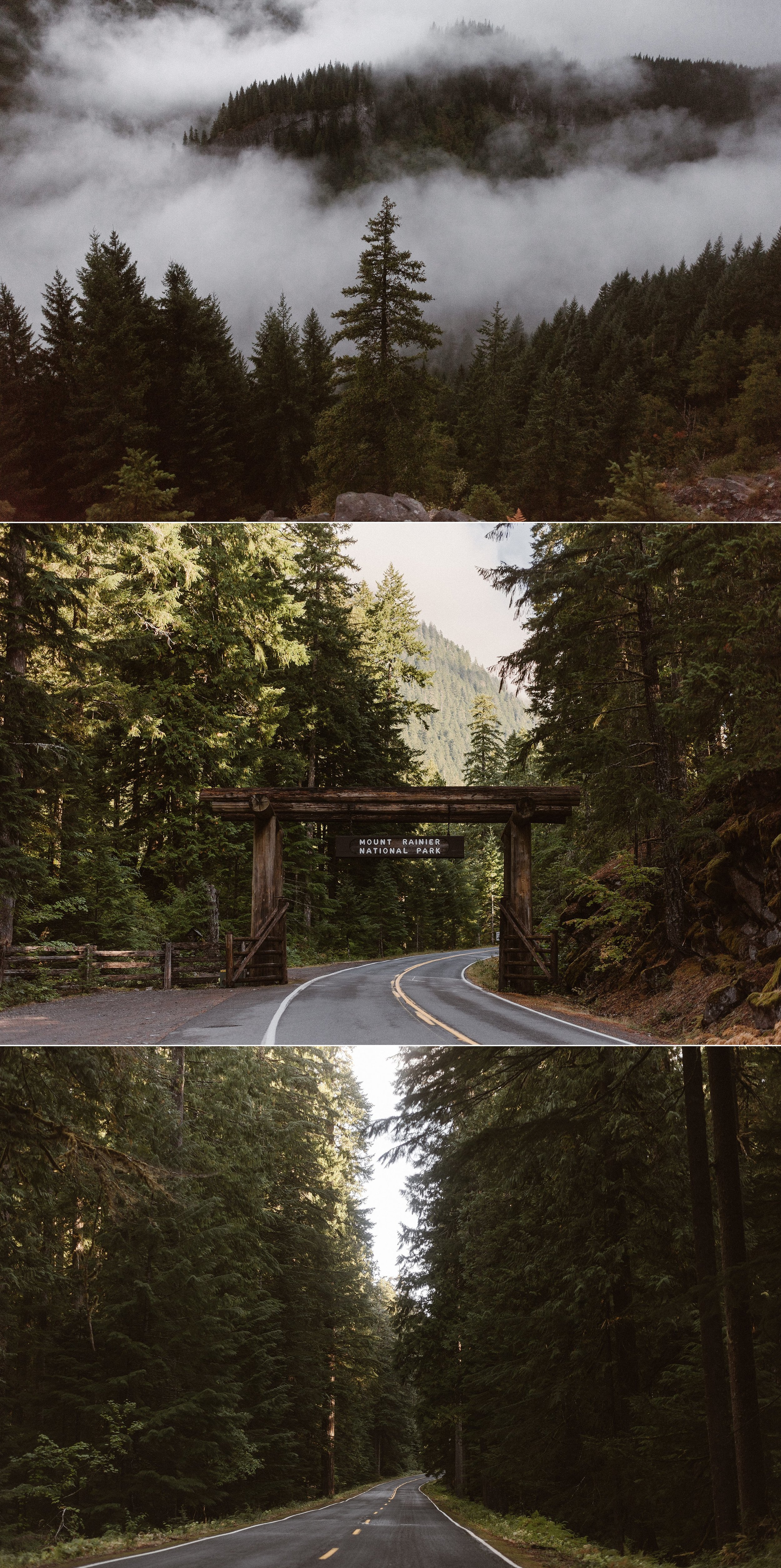 They continued on to higher altitudes through the sun spotted forest of Mount Rainier National Park. The colors and tones of the Pacific Northwest are perfect for any nature lover looking for a forest adventure elopement or intimate wedding. Photos of this foggy Washington wedding by traveling elopement photographer Maddie Mae.