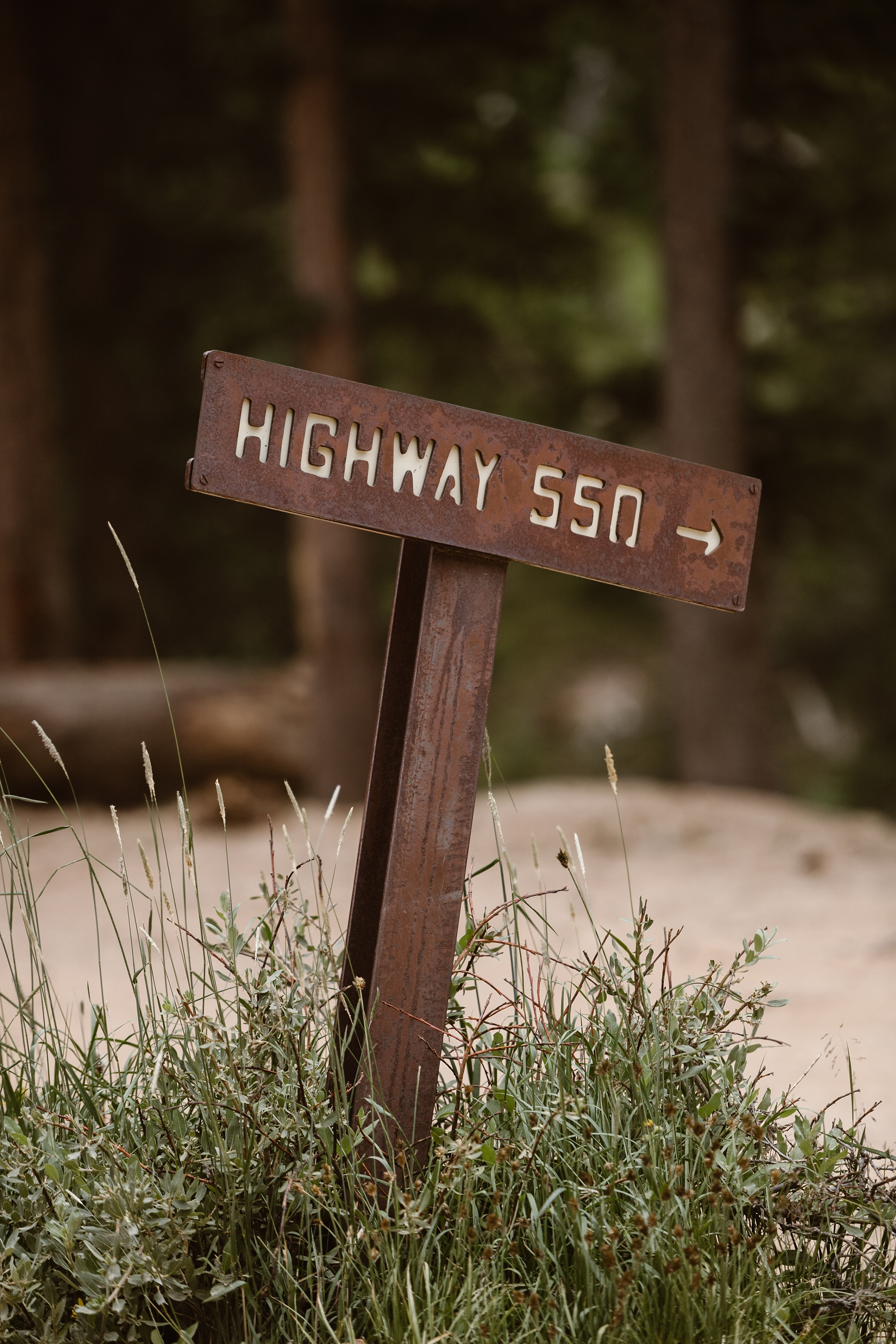 """A red-rust sign sticks out of a bed of weeds and grass stating """"Highway 550"""" with an arrow pointing to the right. This sign will lead the Jeep wedding car to the off road 4x4 path for Katie and Logan, the bride and groom's, elopement ceremony."""