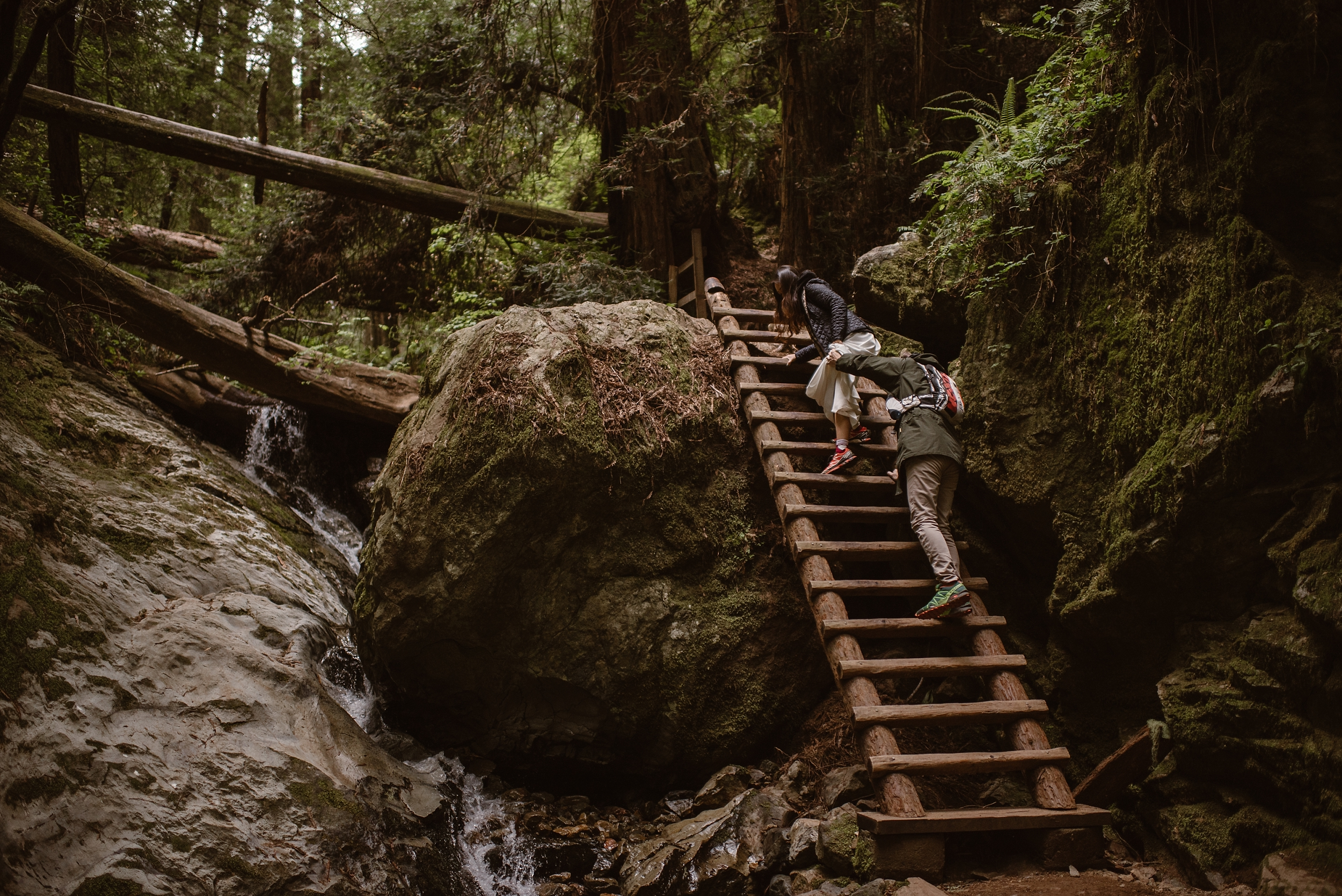 A bride and groom climb up a wooden ladder laying over a mossy rock in an moody, misty Oregon forest. There's tons of green, lush foliage surrounding the couple as they hike through an area with a mini waterfall.