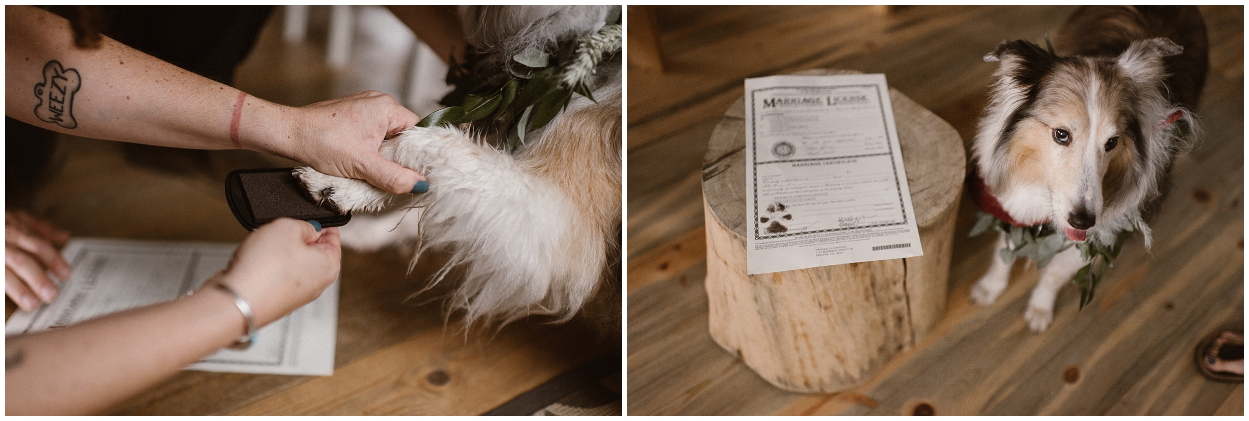 In these side-by-side elopement photos, a pup gets his paw inked so that he can sign the marriage license of his owners. This is one of the unique eloping ideas you can incorporate on how to include your dog in your wedding.