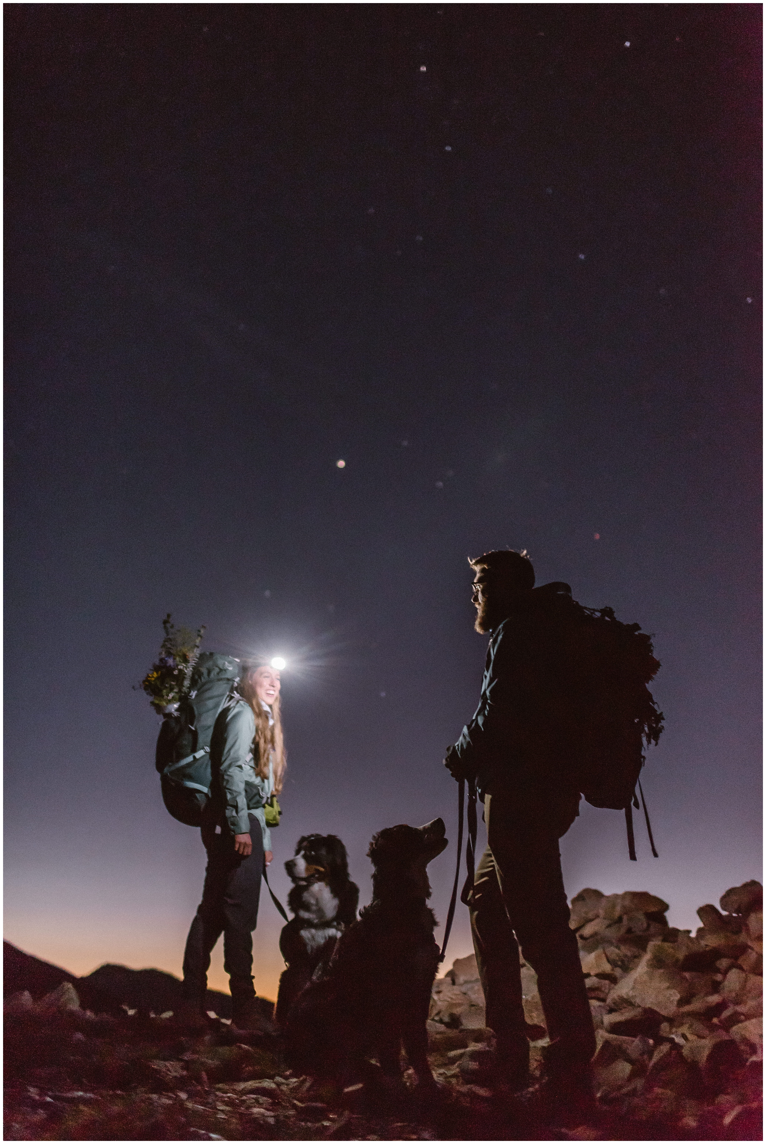 A bride and a groom hike with their two Bernese Mountain Dogs in the wee hours of the morning. The bride and groom wear headlamps as the alpenglow peeks up over the crest of the mountain.