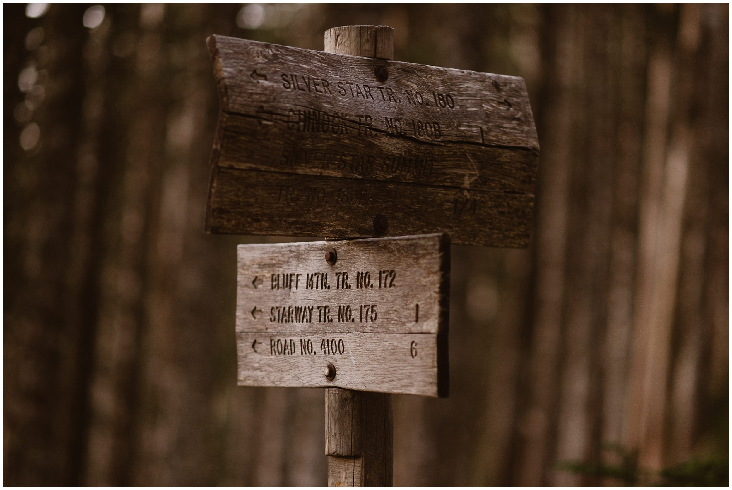Two wooden trail signs guide the way during Lauryn and David's Washington state elopement. A sunrise hike was one of the simple wedding ideas that Lauryn and David wanted to include in their Washington elopement.