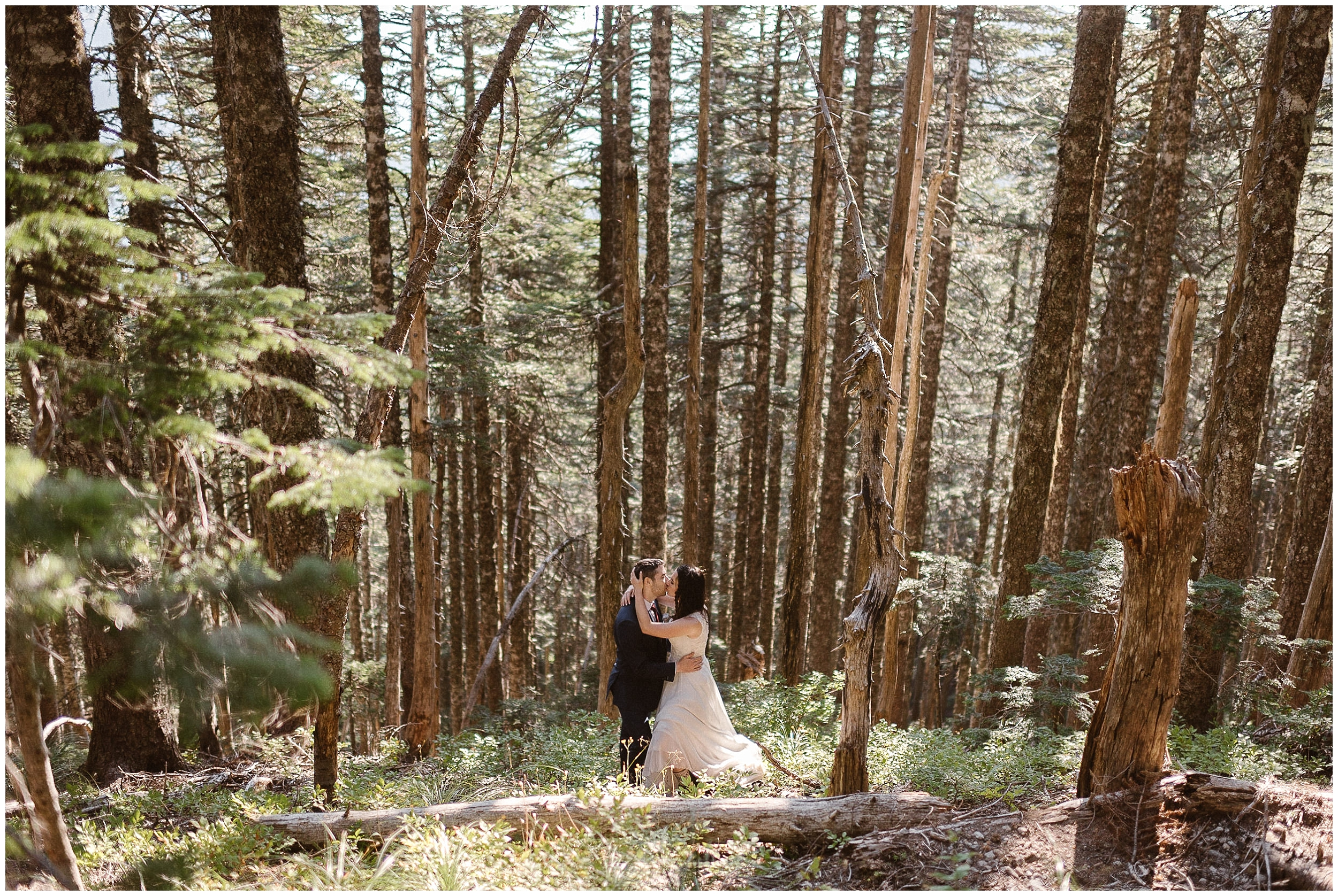 Lauryn and David embrace and kiss, surrounded by a thicket of trees in the Washington wilderness. These elopement photos were captured by elopement wedding photographer Adventure Instead.