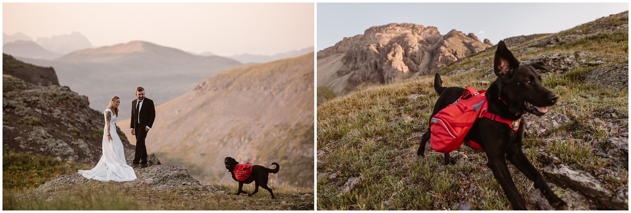 Brecka and Nick, the bride and groom, included their two dogs during their elopement. These side-by-side elopement photos, captured by Adventure Instead, show off some unique eloping ideas they wanted to include in their destination wedding.
