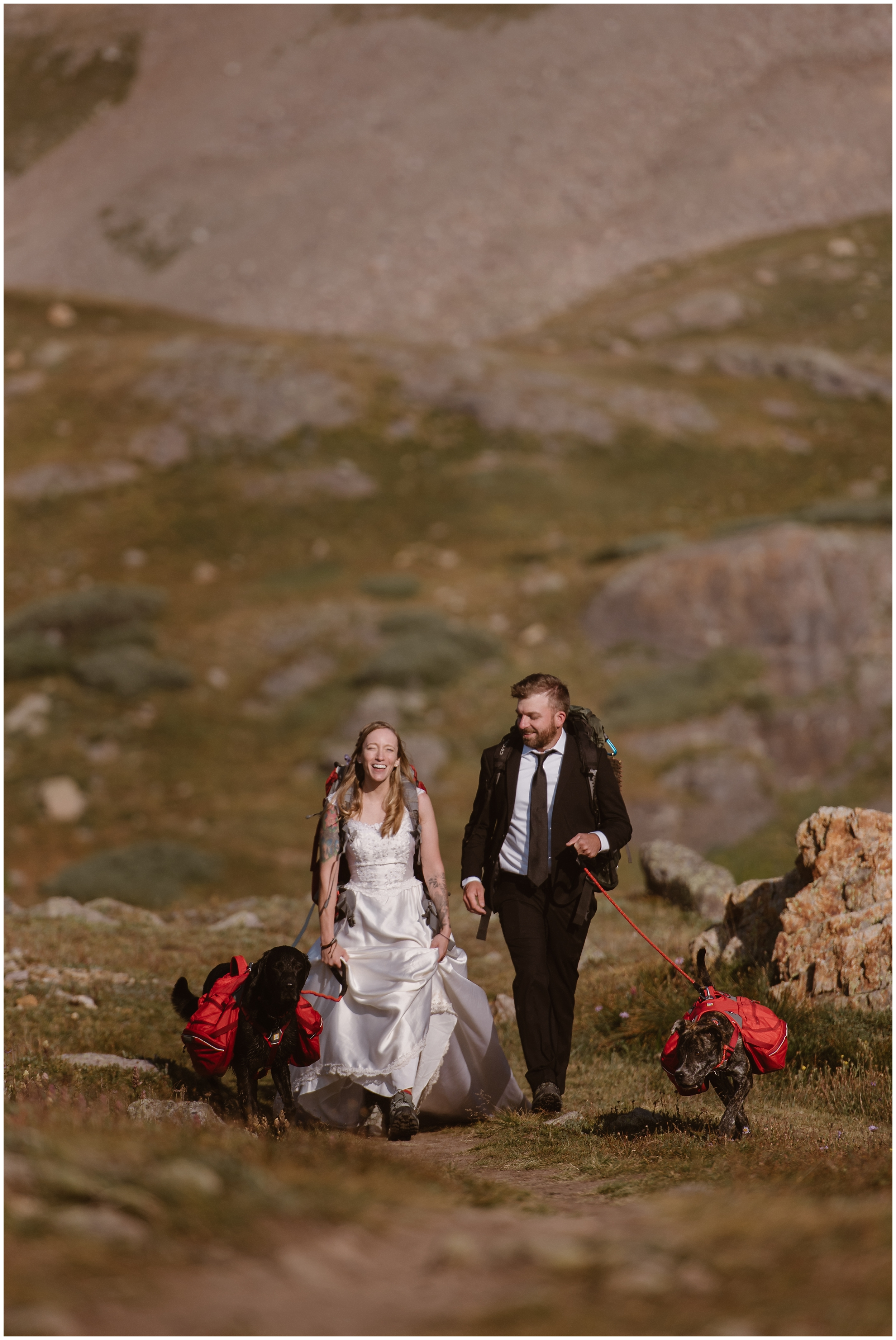 Brecka and Nick wanted to elope with their dogs, Cooper and Trek, so they brough them along on their destination elopement. Brecka and Nick' hike with their pups during their Colorado moutnain wedding. These adventure elopement photos were captured by Adventure Instead, an elopement wedding photographer.