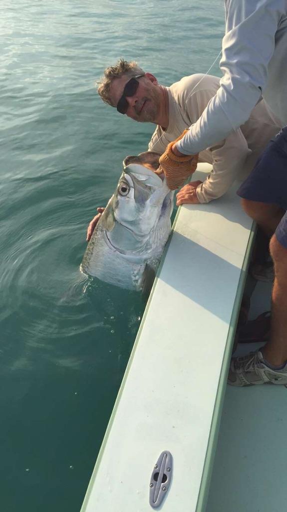Tarpon, Islamorada, Tony Horsley, Fishing Guide
