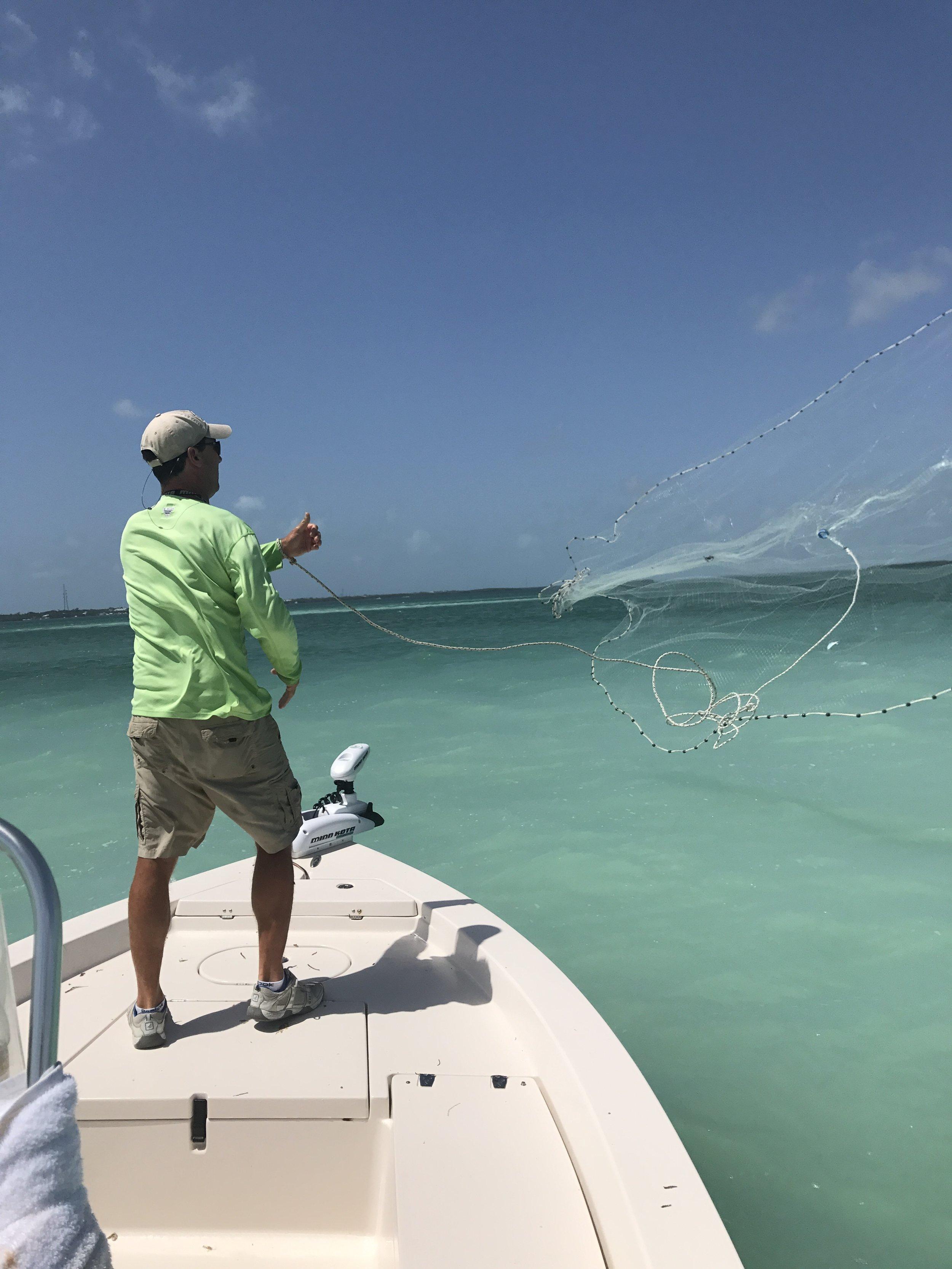 Tarpon Fishing Guide