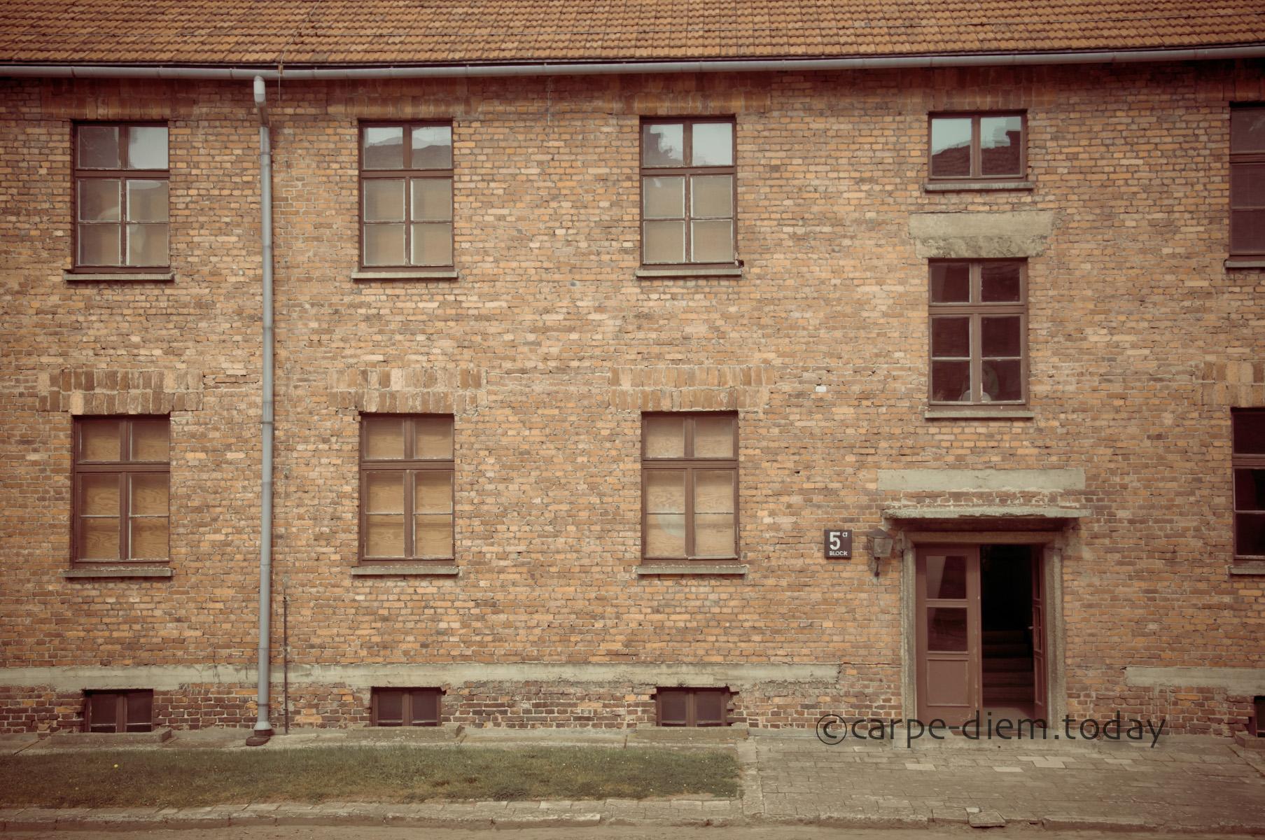 auschwitz-5.jpg