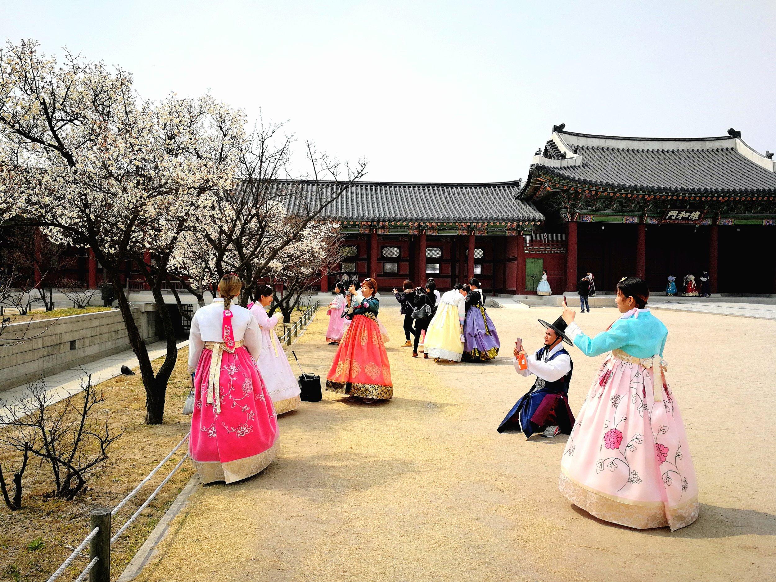 Conoce Corea... - ...y a los coreanos
