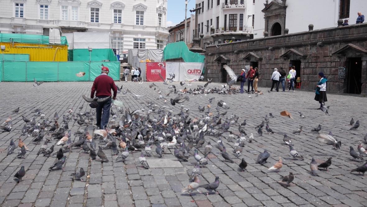 Carpe-Diem.Today Que ver en Quito 10.jpg