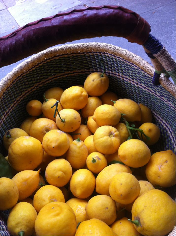 Neighborhood lemons are the best lemons.