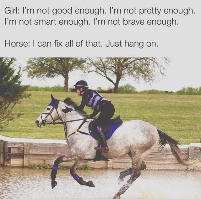 this 🙌🏼 . . . #thevineyardequestrian #horsememes #equestriangear #marthasvineyardlife #equestrian #equestriangirl #equestrianrider #equestrianlove #inspiration #mondayinspiration #horsetherapy #mondaymotivation
