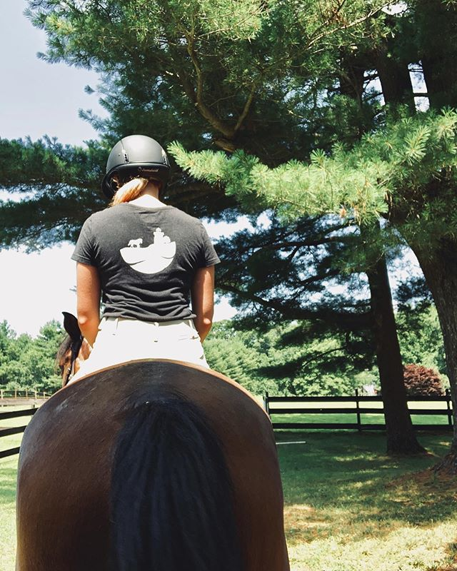 Endless sunny mornings at the barn - that's what #newengland summers are all about 🙌🏼 . . . . . #thevineyardequestrian #marthasvineyard #equestrian #equestrianstyle #equestrians #equestriangear #equestrianlife #equestrianlifestyle #newenglandlife #barnlifeisthebestlife #rootd #horseshow #horseshowlife #horseshowlifestyle
