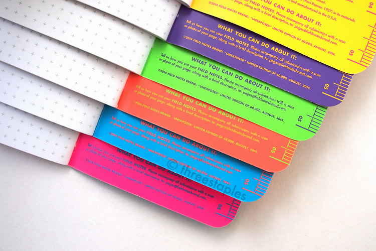 From top: inside of pink, yellow, purple, green, orange and blue books.