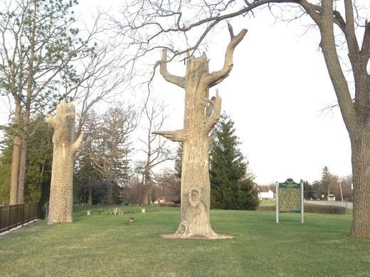 McCourtie tree (1).jpg