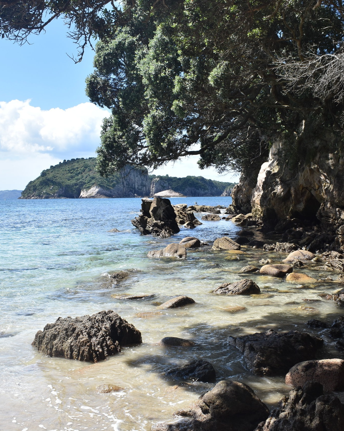 Auckland City to the Coromandel Peninsula -