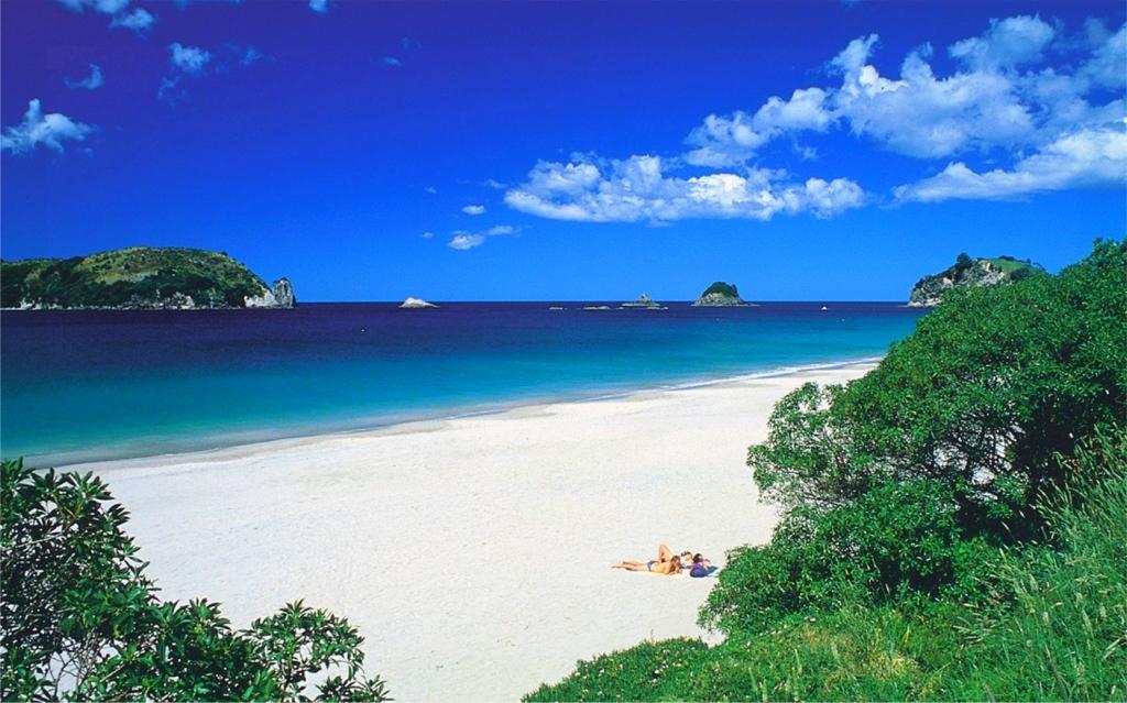 Hahei Beach Pic.jpg