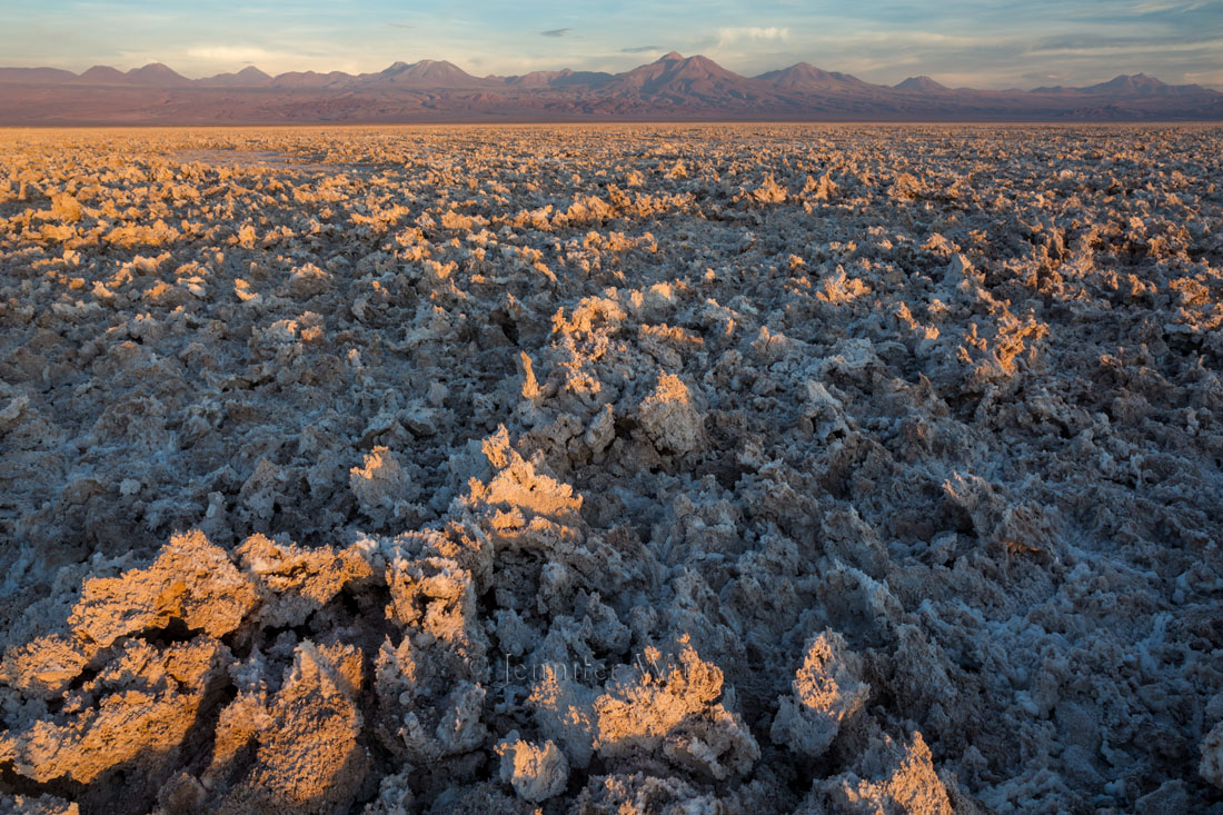 20140209_Atacama_007.jpg