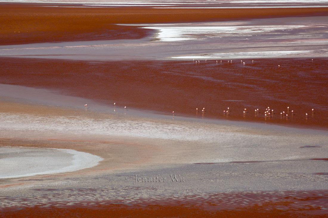 20140212_Atacama_567.jpg