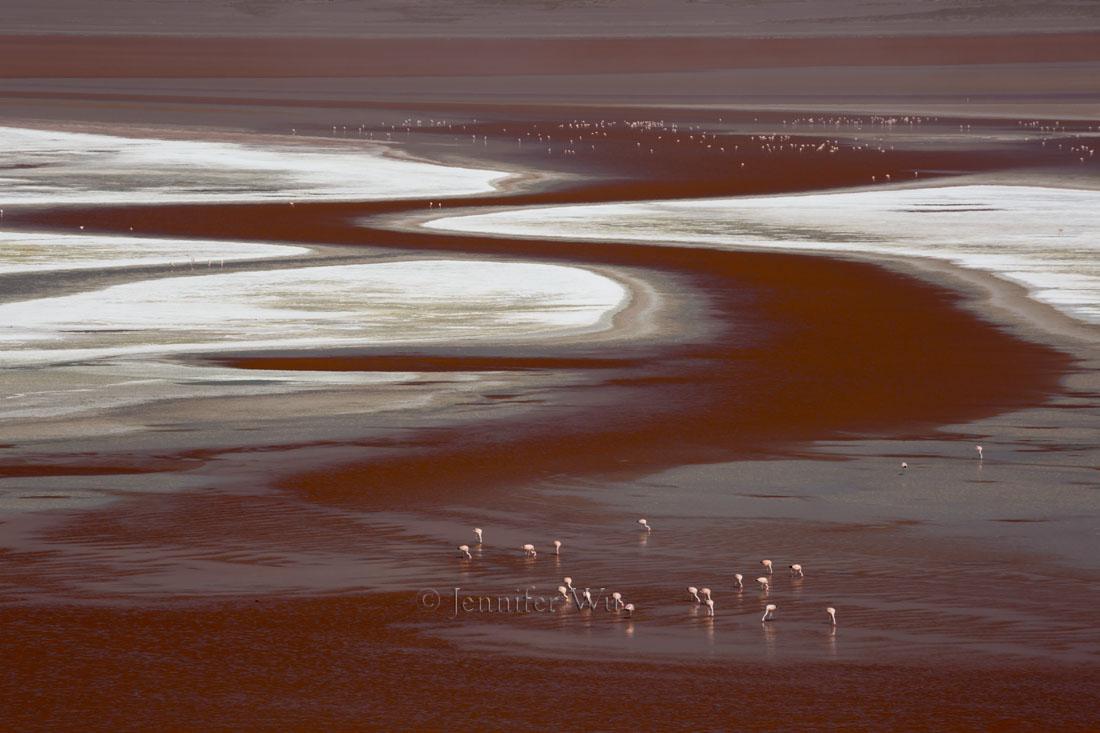 20140212_Atacama_579.jpg