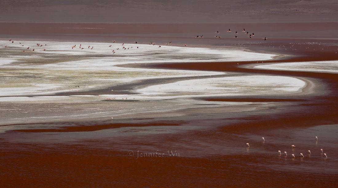 20140212_Atacama_570.jpg