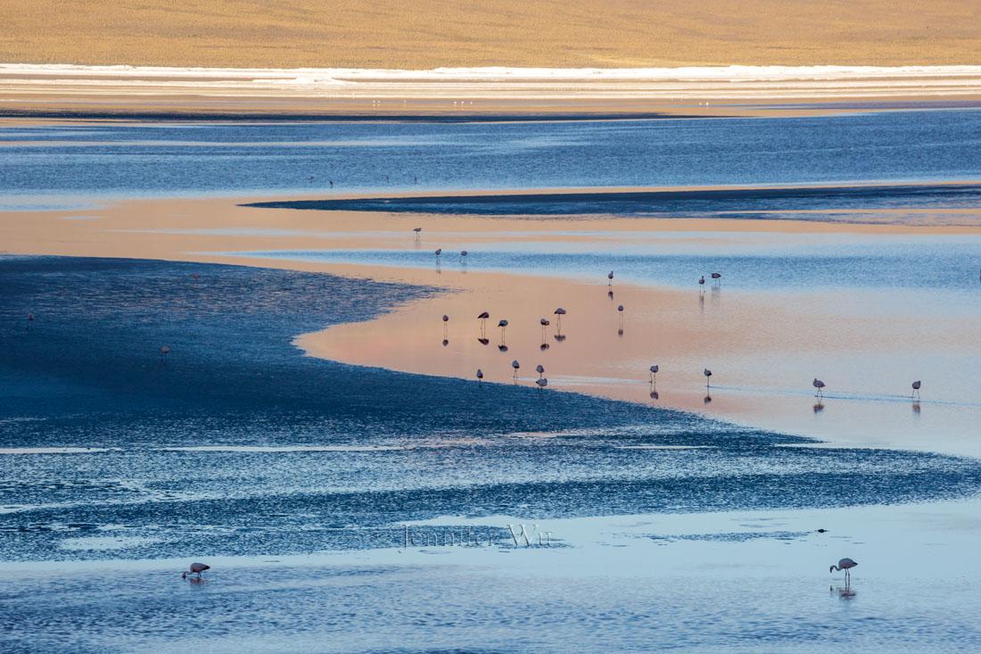 20140212_Atacama_675.jpg