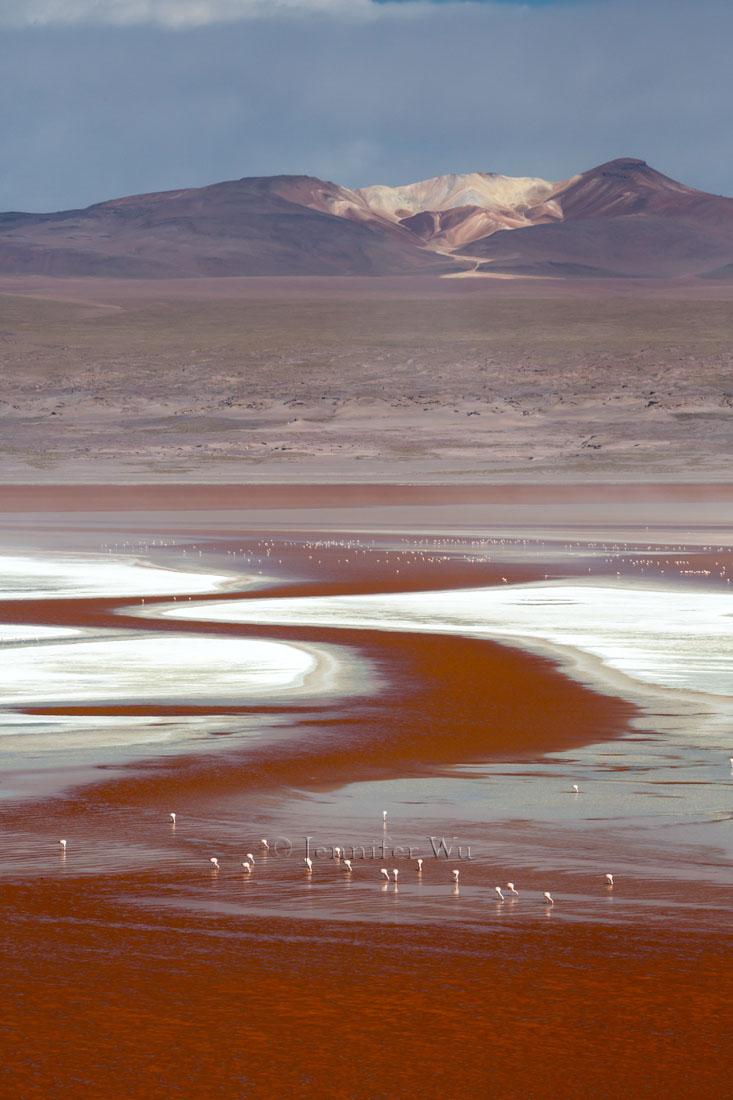 20140212_Atacama_563.jpg