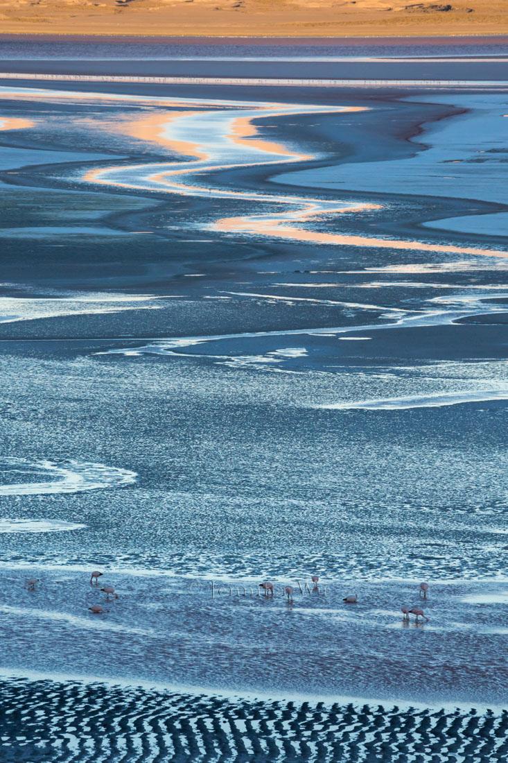 20140212_Atacama_727.jpg