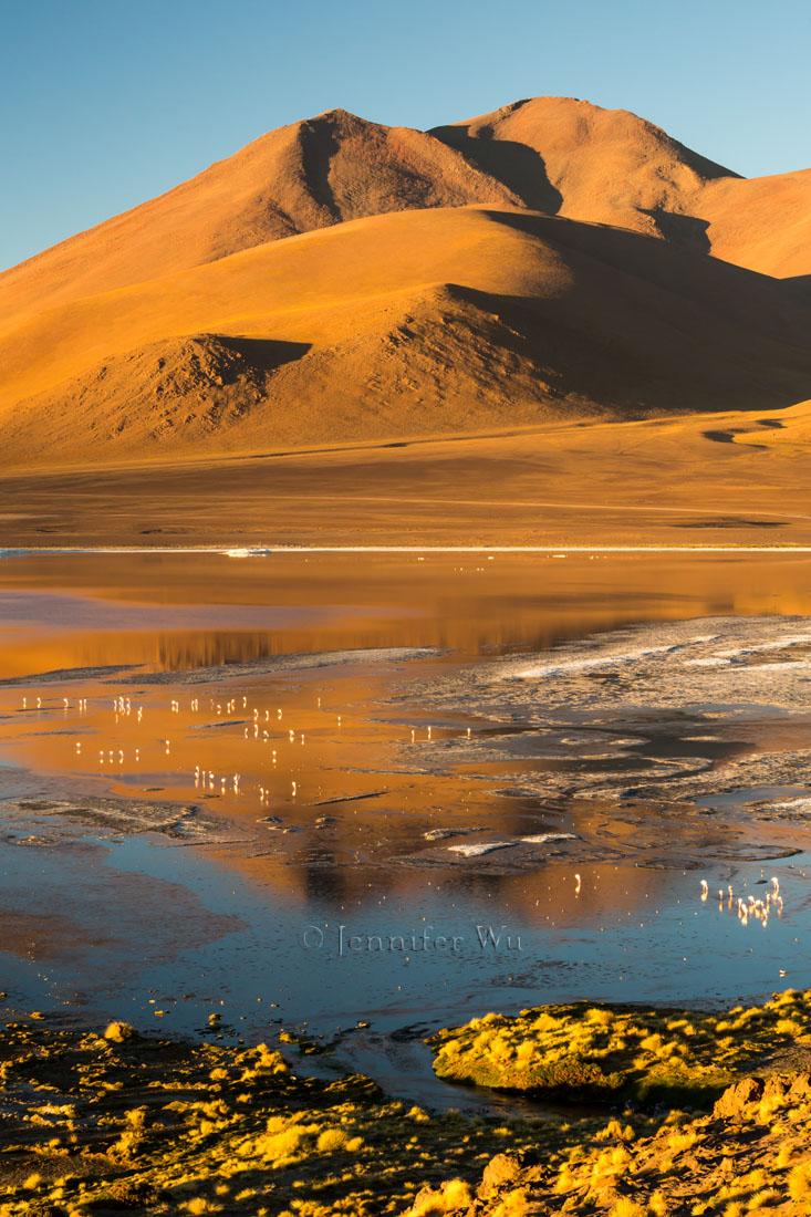 20140213_Atacama_048.jpg