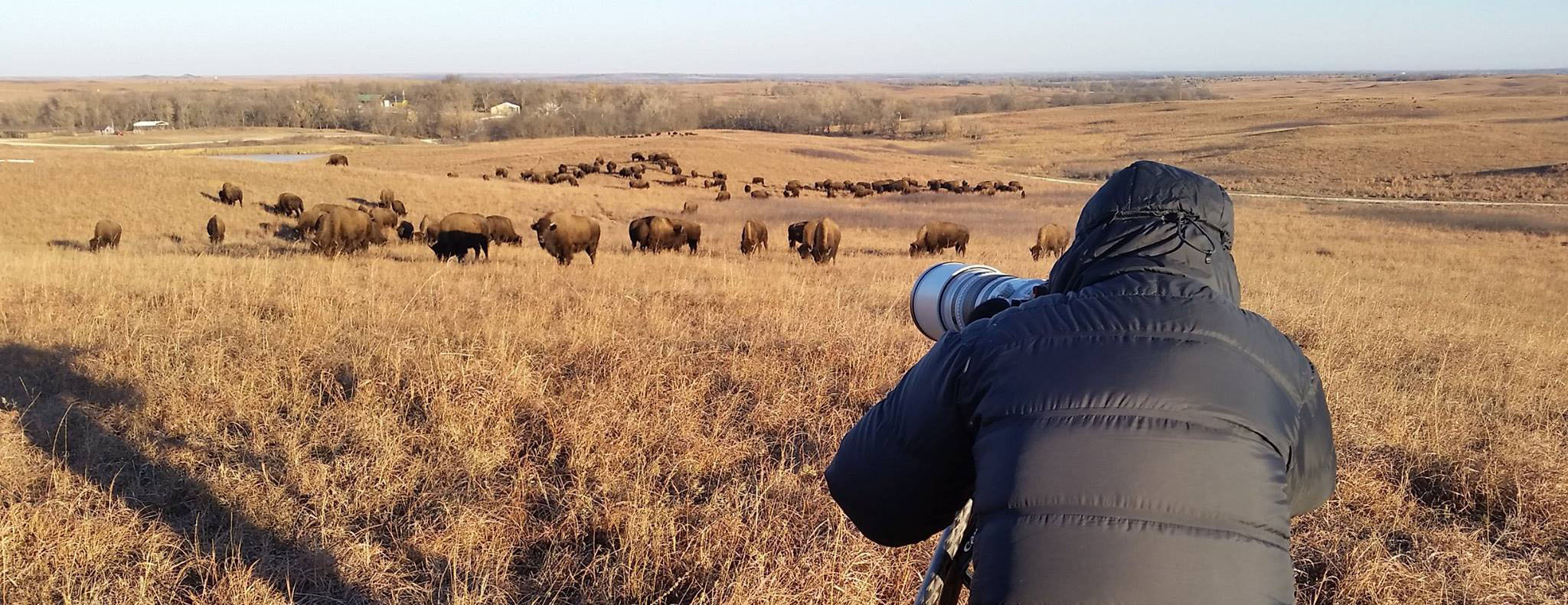 Photographing the bison at sunrise. Photo by Jeff Heidel.