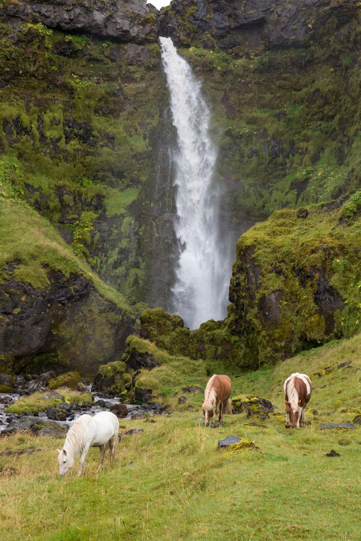 20140826_Iceland_619.jpg