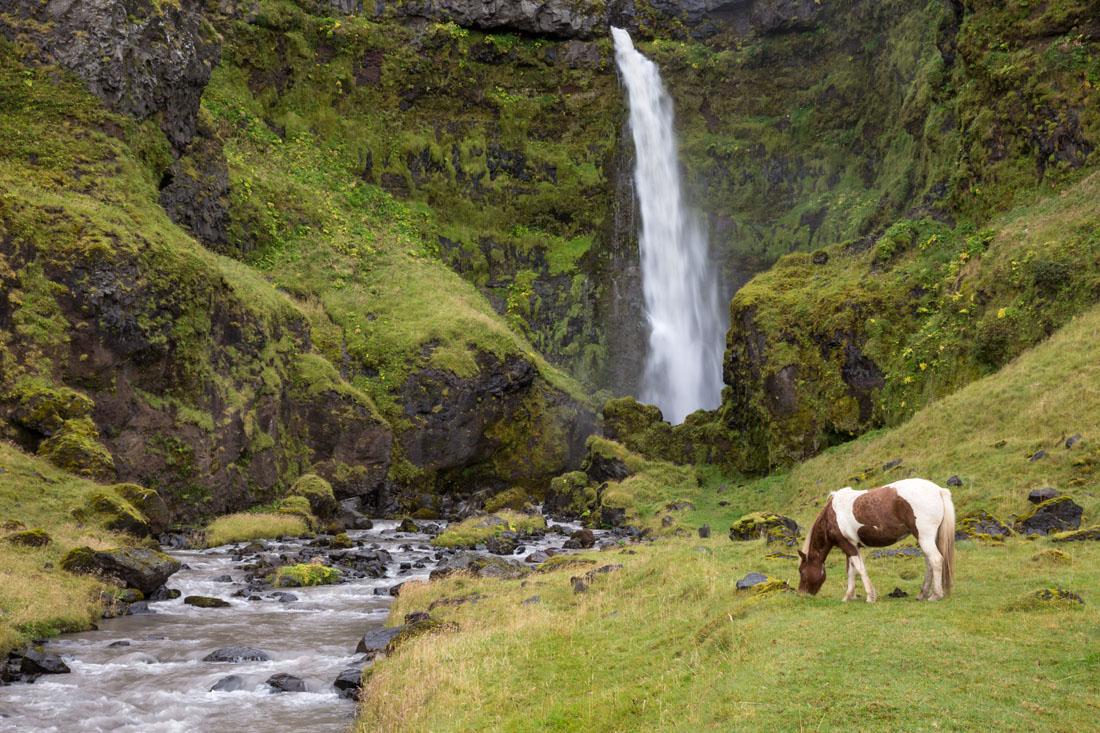 20140826_Iceland_643.jpg