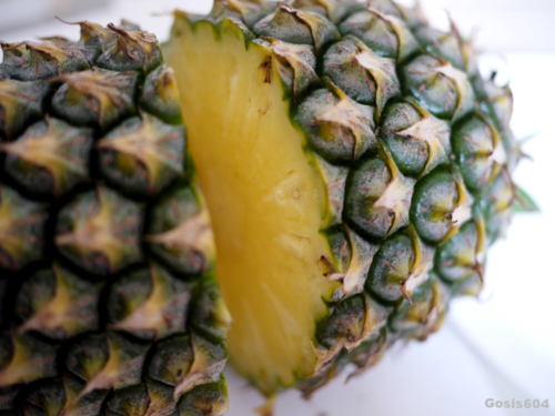 pineapple2.png