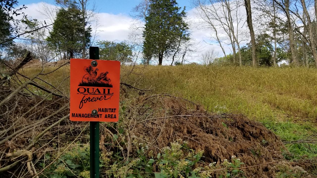 2018.10 Quail forever sign at millet field .jpg