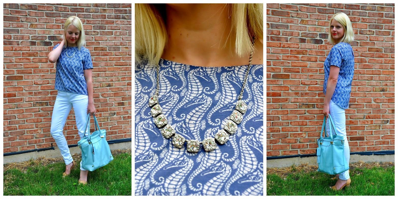 seahorse+collage.jpg.jpg