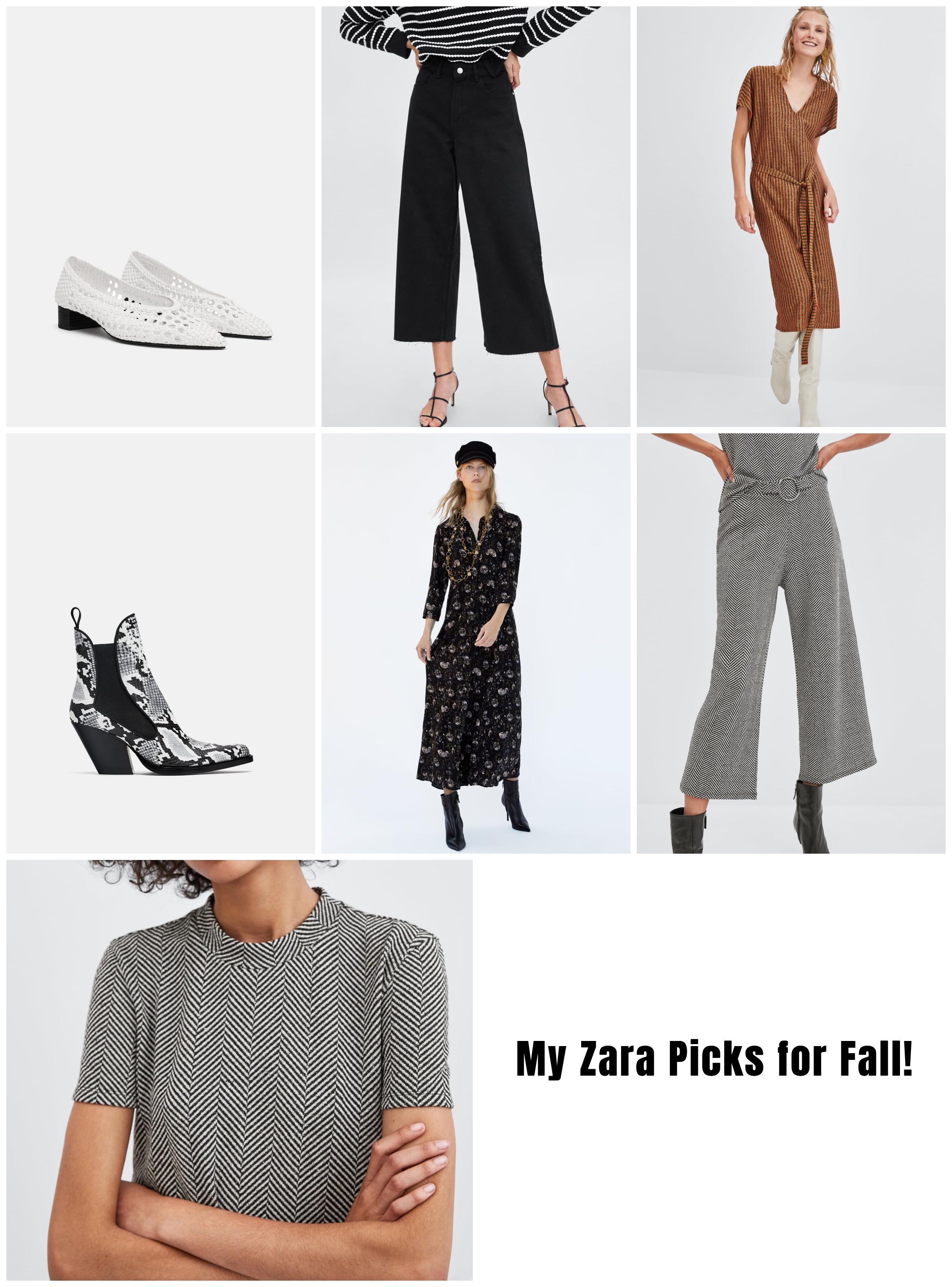 Zara Fall picks.jpg