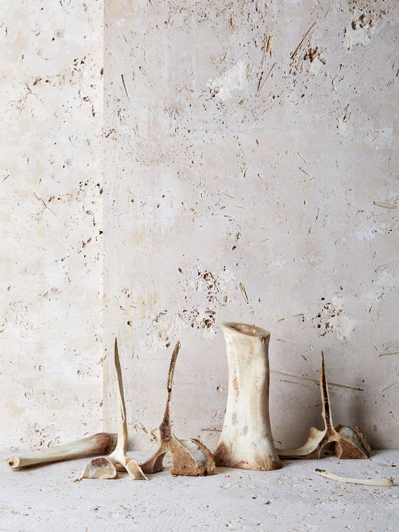 3-Bone-Broth_lovely-bones-2.jpg