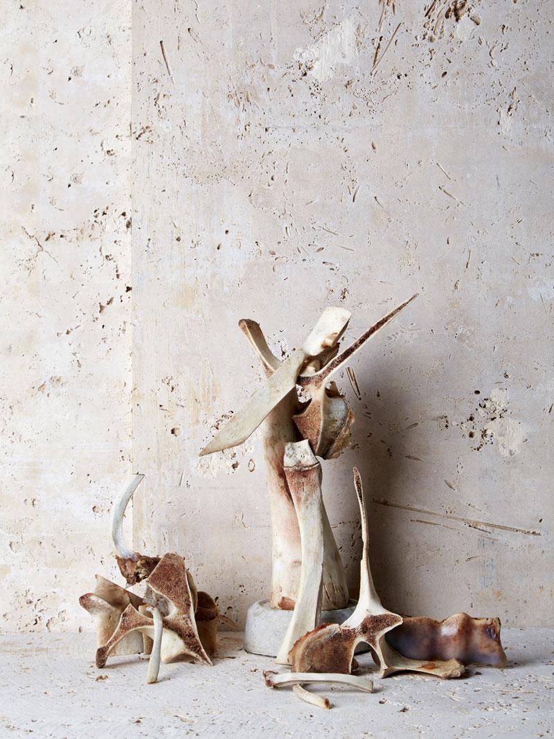 1-Bone-Broth_lovely-bones-1.jpg