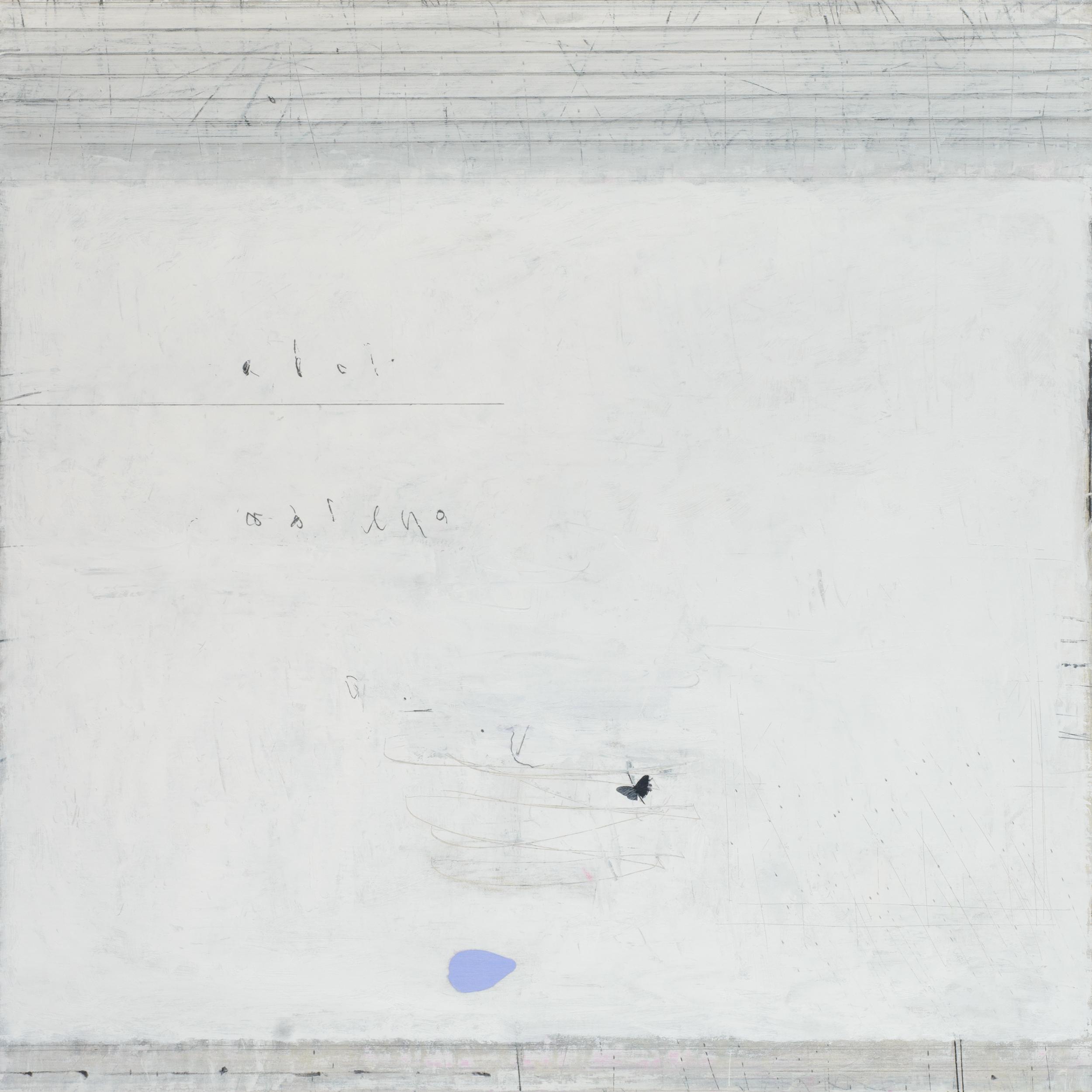 Airborne. oil & graphite on canvas  100 x 100 cm