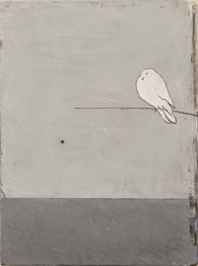 dove. oil & graphite on wood  15 x 20 cm
