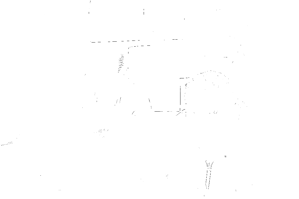 20170121-DSCF4571 copy.png