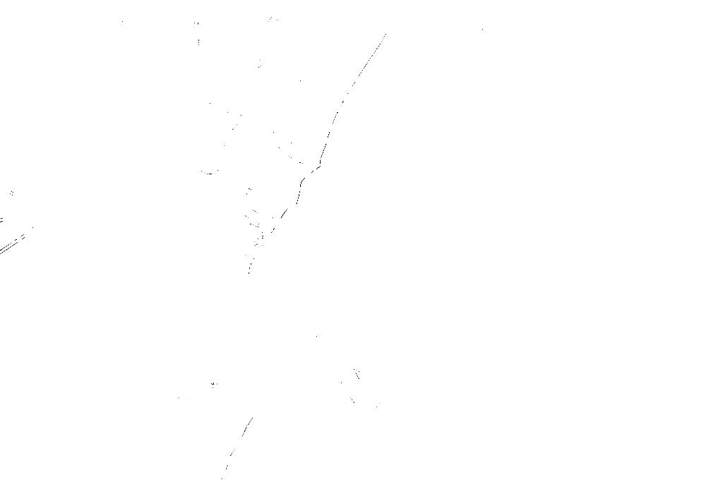 20170121-DSCF4578 copy.png