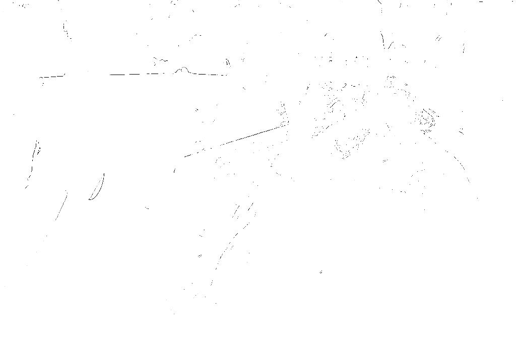 20170121-DSCF4613 copy.png