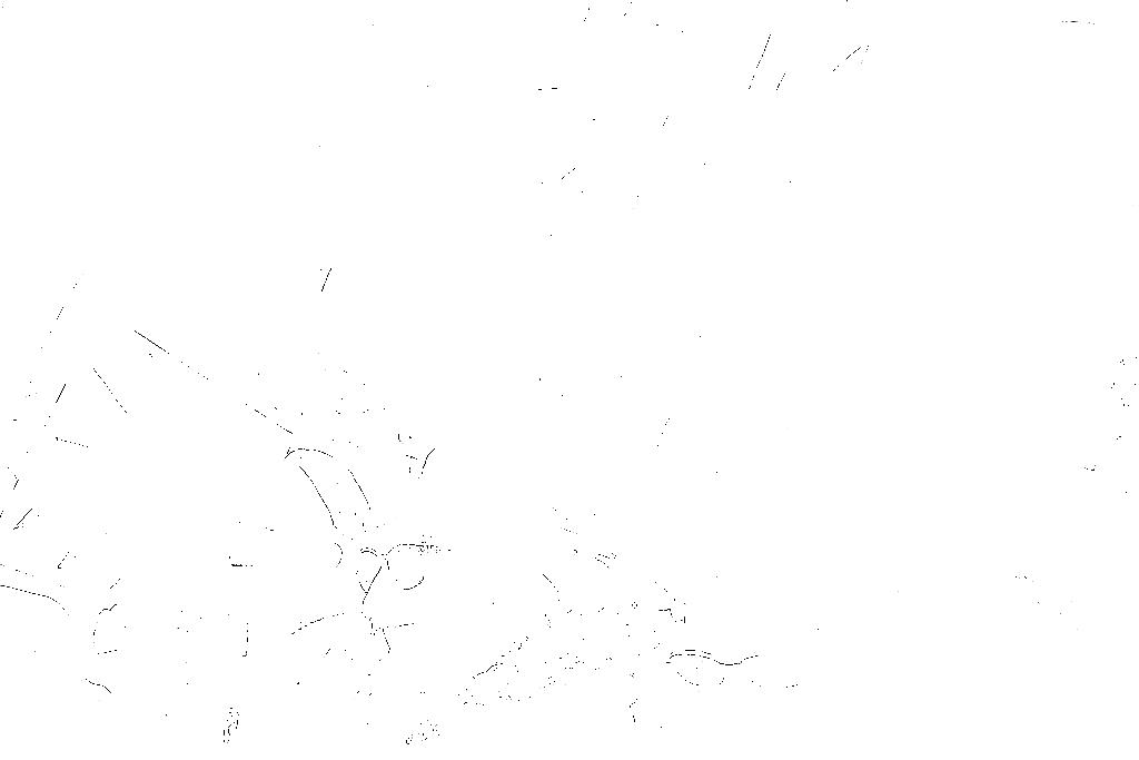 20170121-DSCF4701 copy.png