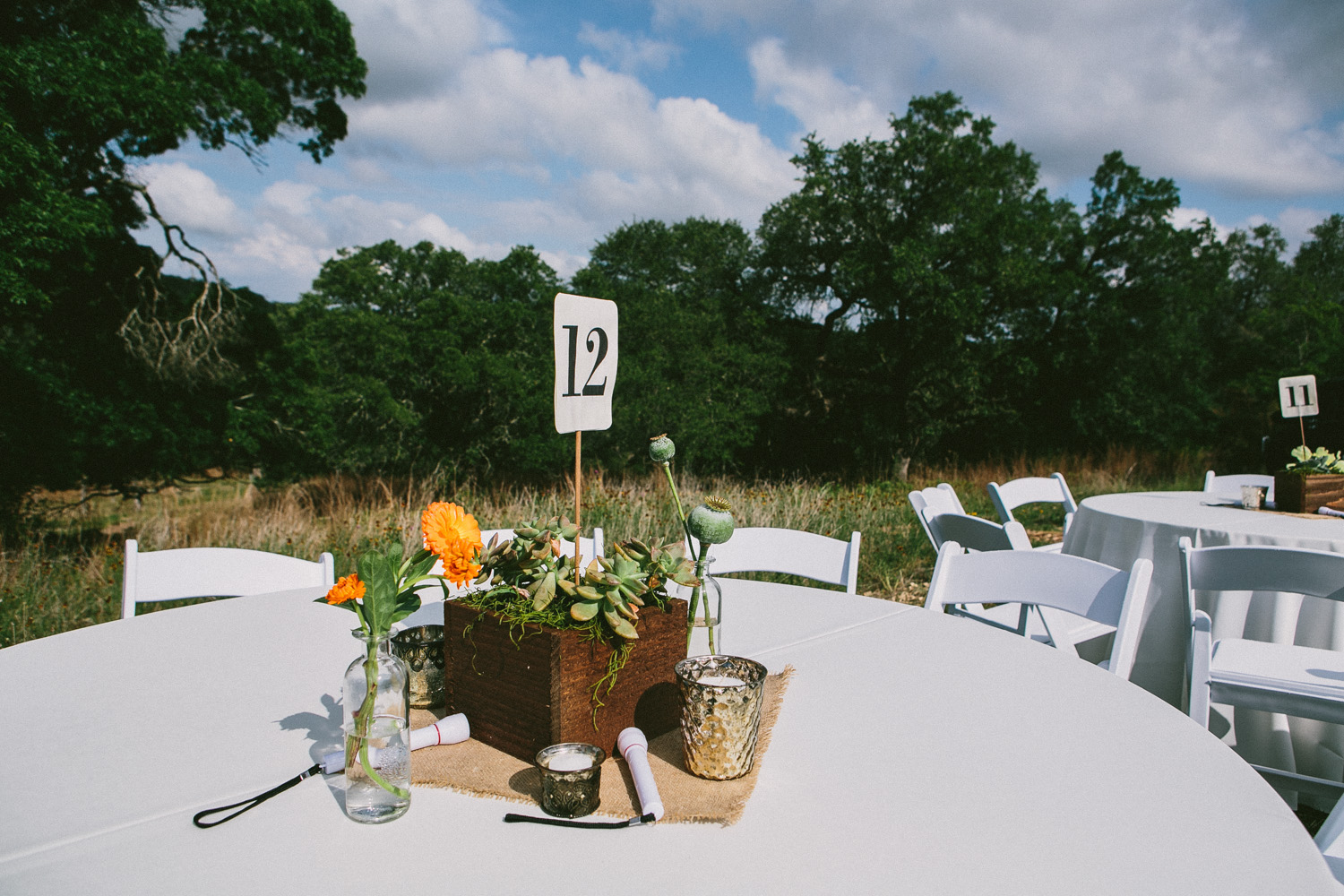 Succulent Center Piece   Texas Hill Country Ranch Wedding   Lisa Woods Photography