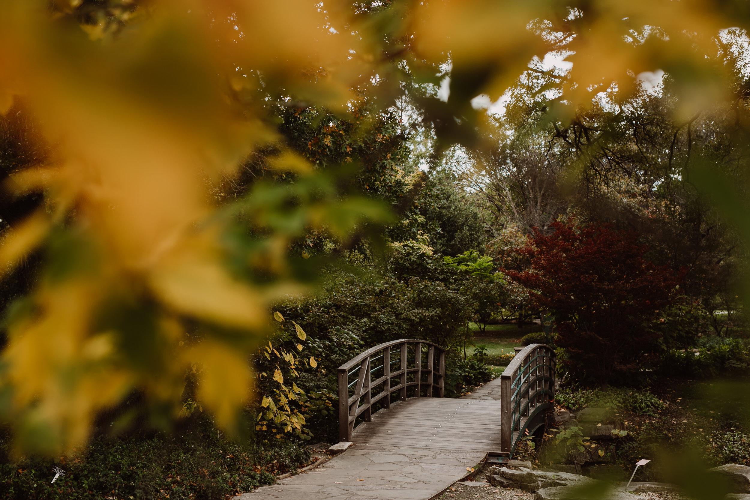 ftworth-botanical-gardens-wedding-M&T (215 of 548).jpg