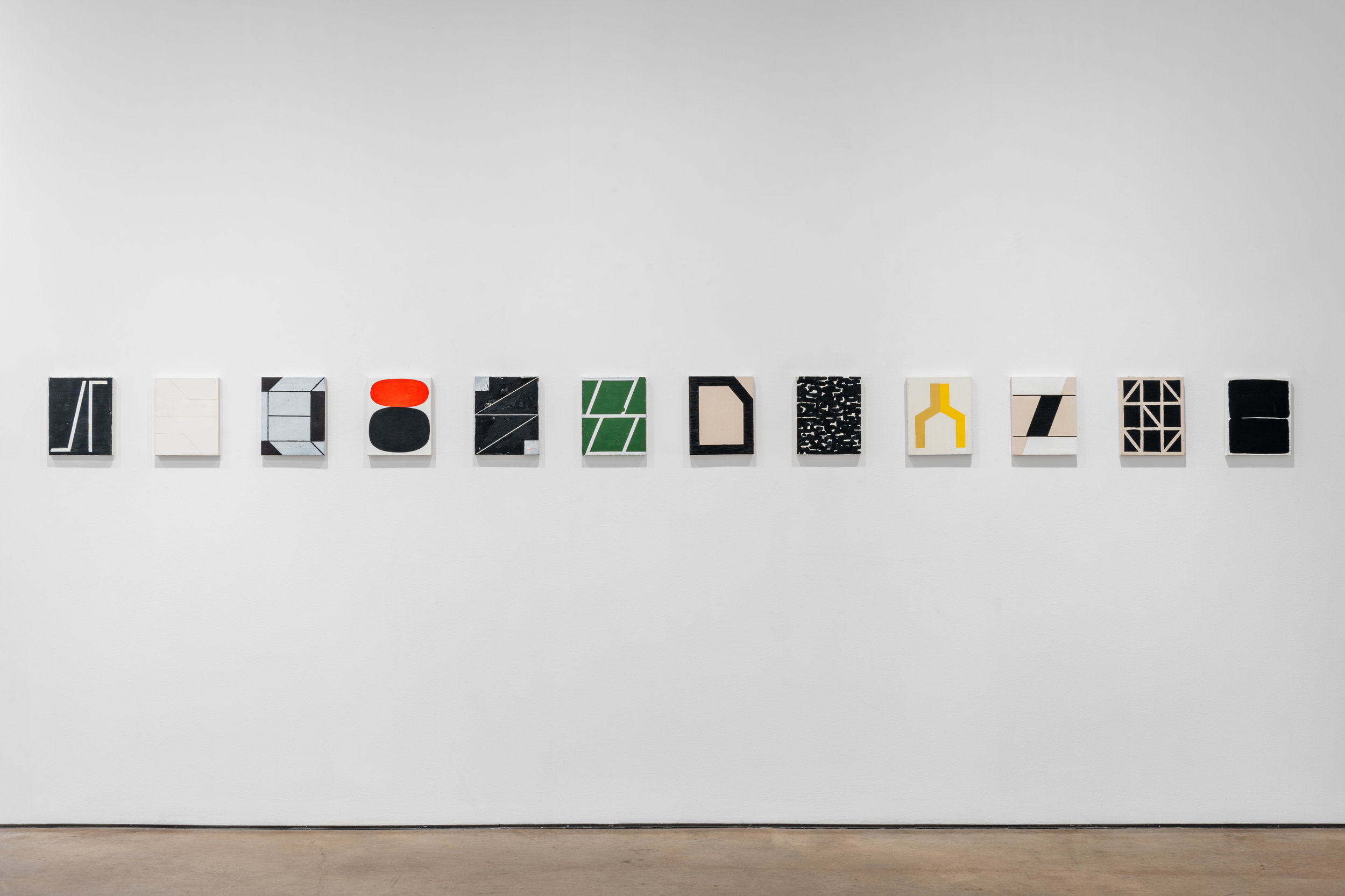 Install (David Shelton Gallery).