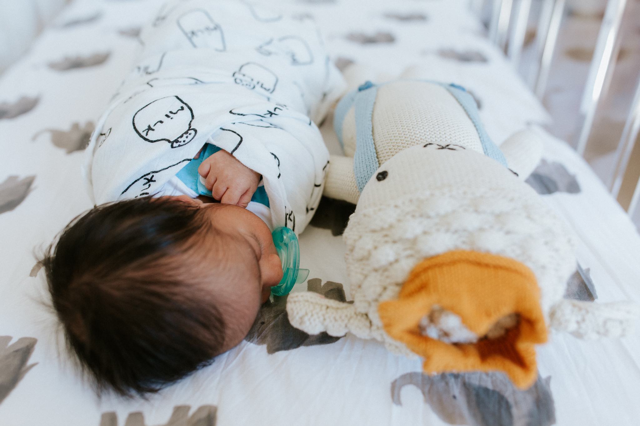 Milwaukee Newborn Photographer| Home with Yuva