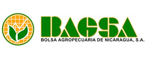 BAGSA.png