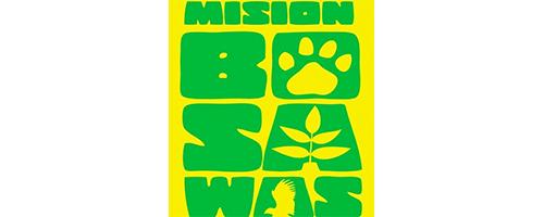 Misión Bosawas.png